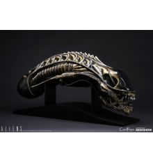 Sideshow Collectibles Alien Warrior Life-Size Head by CoolProps