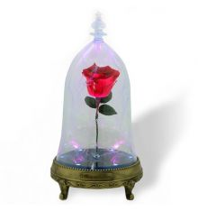 Camino Beauty & The Beast Enchanted Rose Speaker